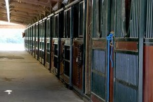 Photo #2: Horse Boarding - No Training Package Required - Wildwood Farm