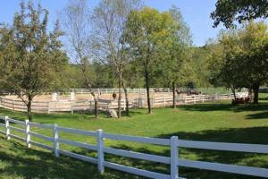 Photo #4: Horse Boarding - No Training Package Required - Wildwood Farm