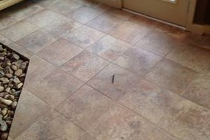 Photo #7: Last Flooring LLC
