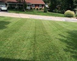Photo #5: Shannas m+g lawn care and land scape