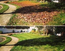 Photo #9: Shannas m+g lawn care and land scape