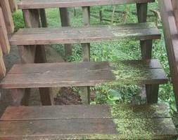 Photo #10: Deck building, staining, and reconditioning