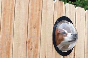 Photo #4: Abbey Fence - Wood Fence Installation