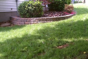 Photo #12: This Is What We Do - Hardscape and Landscape