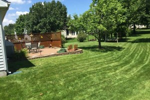 Photo #2: R&N Lawn Care -  lawn mowing for all season