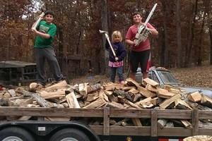 Photo #1: Lawn Maintenance (+selling firewood)