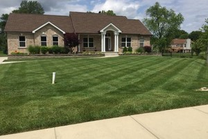 Photo #1: C&C Lawn and Landscaping LLC