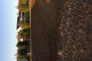 Photo #11: Excavating Service