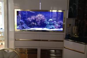 Photo #6: Aquarium service