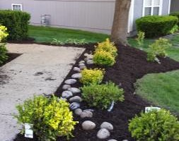 Photo #10: Maderos Lawn & Landscaping, LLC