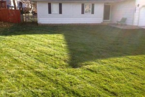 Photo #10: GRASSY PLAINS. HIRE U.S. VETERANS FOR YOUR LAWN CARE NEEDS!!!