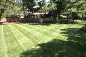 Photo #9: GRASSY PLAINS. HIRE U.S. VETERANS FOR YOUR LAWN CARE NEEDS!!!