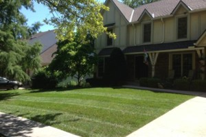 Photo #8: GRASSY PLAINS. HIRE U.S. VETERANS FOR YOUR LAWN CARE NEEDS!!!