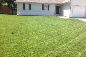 Photo #7: GRASSY PLAINS. HIRE U.S. VETERANS FOR YOUR LAWN CARE NEEDS!!!