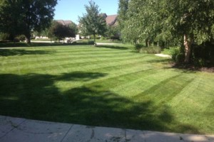 Photo #5: GRASSY PLAINS. HIRE U.S. VETERANS FOR YOUR LAWN CARE NEEDS!!!