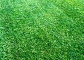 Photo #2: GRASSY PLAINS. HIRE U.S. VETERANS FOR YOUR LAWN CARE NEEDS!!!