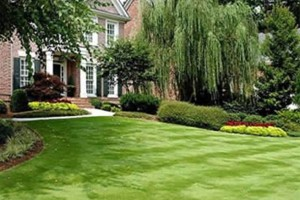 Photo #1: Waldo & Brookside Lawn Care Service Starting at $20