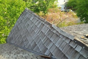 Photo #19: Roofing Repairs - roof leaks, roof decking, facsia board and soffits