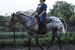 Photo #4: Horseback Riding Lessons and Equine Services