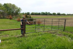 Photo #8: Dillards Fencing & Supplies. Fence Installation