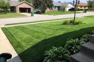 Photo #2: Lanier lawn care