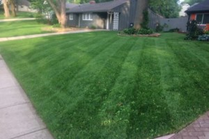 Photo #1: JOCO Affordable Lawn Care - Great Service - No Contracts