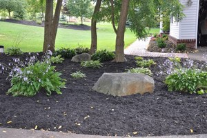 Photo #4: All Green Landscaping/hardscapes Services