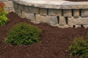 Photo #5: All Green Landscaping/hardscapes Services