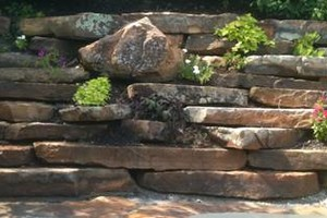 Photo #14: All Green Landscaping/hardscapes Services