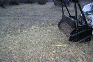 Photo #3: Pasture Clearing, Land Clearing