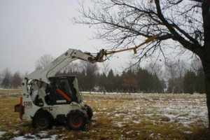 Photo #2: Pasture Clearing, Land Clearing