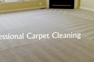 Photo #1: Bosma Westonka Carpet Cleaning. REASONABLY PRICED! SINCE 1986
