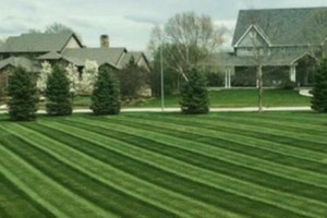 Photo #2: LANDSCAPING - SPRING CLEAN UP - LAWN MOWING