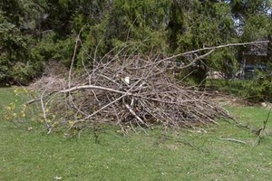 Photo #1: LANDSCAPING - SPRING CLEAN UP - LAWN MOWING