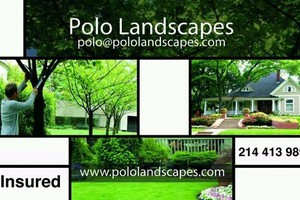 Photo #1: Polo landcaspes