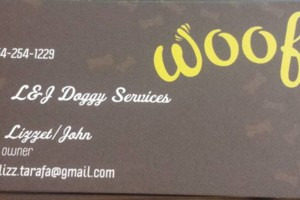 Photo #1: Dog/puppy training services