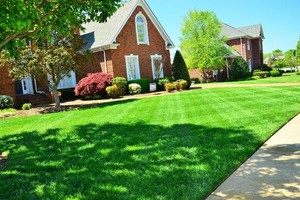 Photo #1: Tilleys Lawn. Lawn Mowing Specials - As Low As $25 - Ends April 8th