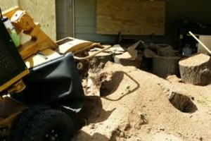 Photo #5: Tree Stump Grinding (have openings this week)
