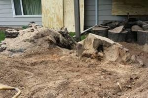 Photo #4: Tree Stump Grinding (have openings this week)