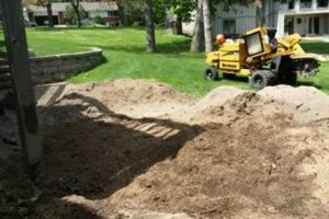 Photo #1: Tree Stump Grinding (have openings this week)