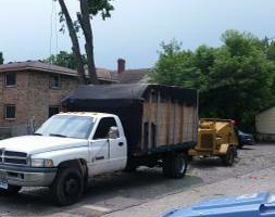 Photo #4: FREDY'S TREE SERVICES. FULLY INSURED! TREE TRIMMING AND REMOVAL