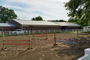 Photo #5: Orange Rose Stables. Horseback Riding Lesson