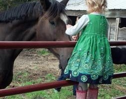 Photo #8: Orange Rose Stables. Horseback Riding Lesson