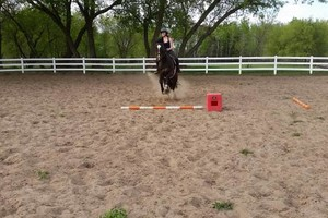 Photo #9: Orange Rose Stables. Horseback Riding Lesson