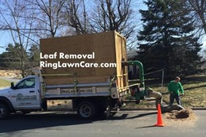 Photo #3: RING LAWN CARE ~ RESIDENTIAL & COMMERCIAL LAWN CARE ~ LAWN MOWING