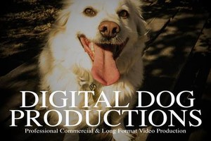 Photo #1: Digital Dog Productions. Video Production Service