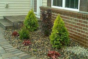 Photo #3: Joes Garden Design and maintenance