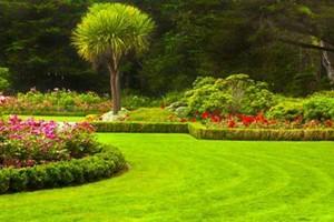 Photo #1: SIMY's Lawn Service