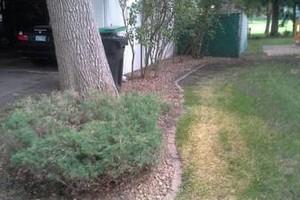 Photo #1: Yard & Garden Services - $20/hr