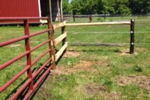 Photo #11: Custom Fencing (farm, boundary fencing)